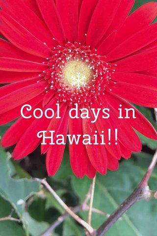 Cool days in Hawaii!!