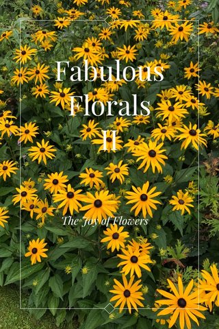 Fabulous Florals II The Joy of Flowers