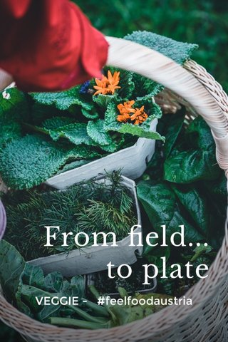 From field... to plate VEGGIE - #feelfoodaustria
