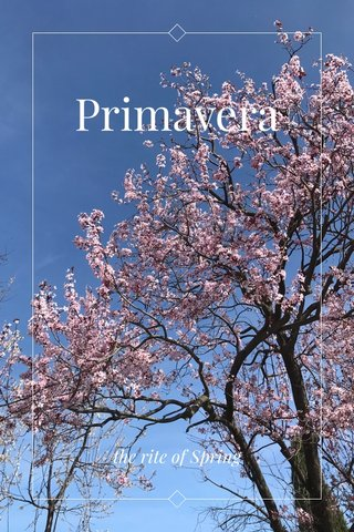 Primavera the rite of Spring