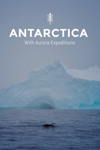 ANTARCTICA With Aurora Expeditions