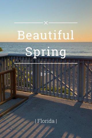 Beautiful Spring | Florida |