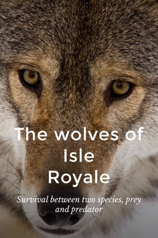 The wolves of Isle Royale Survival between two species, prey and predator