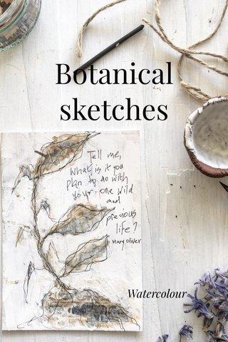 Botanical sketches Watercolour