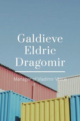 Galdieve Eldric Dragomir Manager of Vladimir VNice