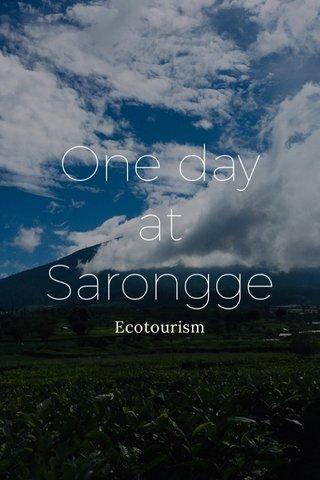 One day at Sarongge Ecotourism