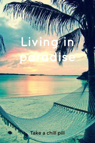 Living in paradise Take a chill pill