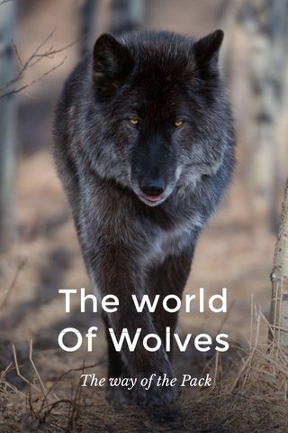 The world Of Wolves The way of the Pack