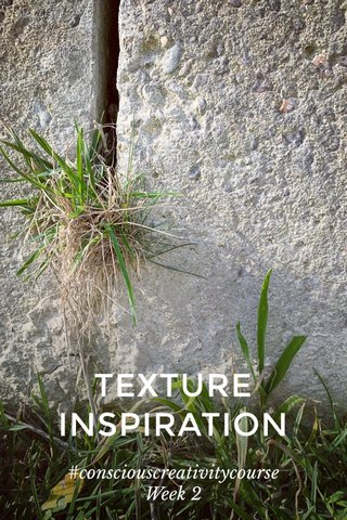 TEXTURE INSPIRATION #consciouscreativitycourse Week 2