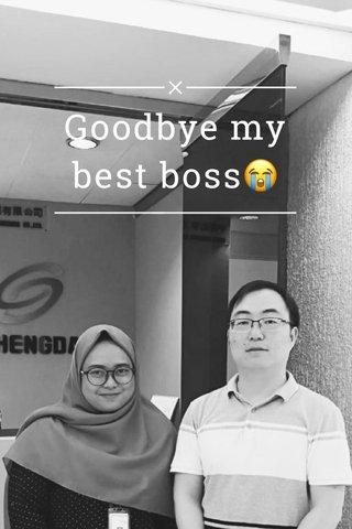 Goodbye my best boss😭