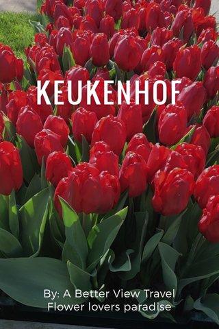 KEUKENHOF By: A Better View Travel Flower lovers paradise