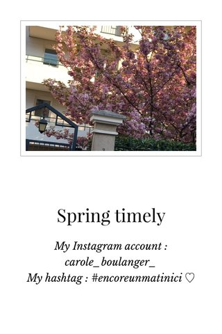 Spring timely