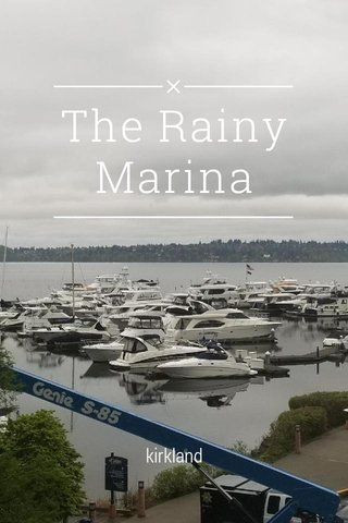 The Rainy Marina kirkland