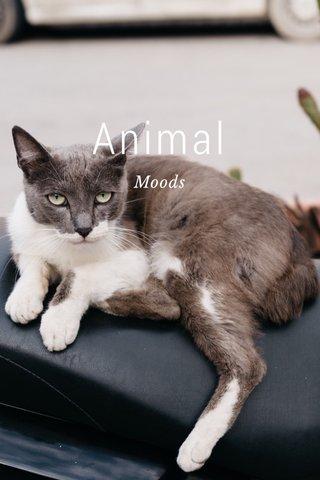 Animal Moods