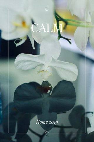 CALM Home 2019