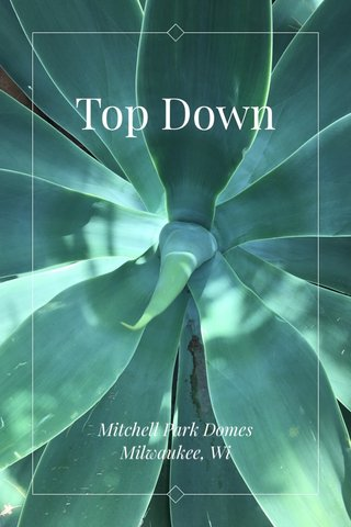 Top Down Mitchell Park Domes Milwaukee, Wi