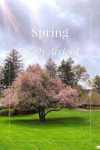 Spring Finally Arrived