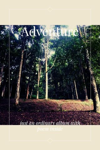 Adventure just an ordinary album with poem inside