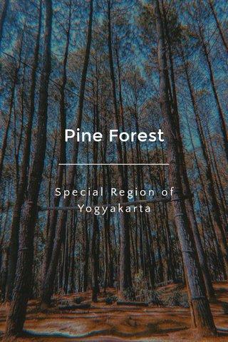 Pine Forest Special Region of Yogyakarta