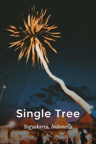 Single Tree Yogyakarta, Indonesia