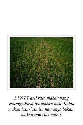 Di NTT arti kata makan yang sesungguhnya itu makan nasi. Kalau makan lain-lain itu namanya bukan makan tapi cuci mulut.