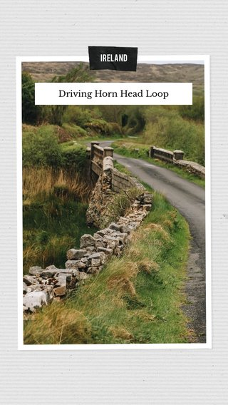 Driving Horn Head Loop IRELAND