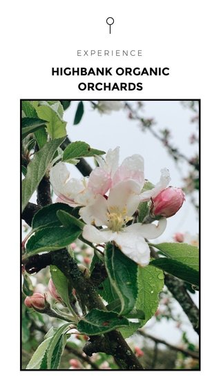 HIGHBANK ORGANIC ORCHARDS EXPERIENCE
