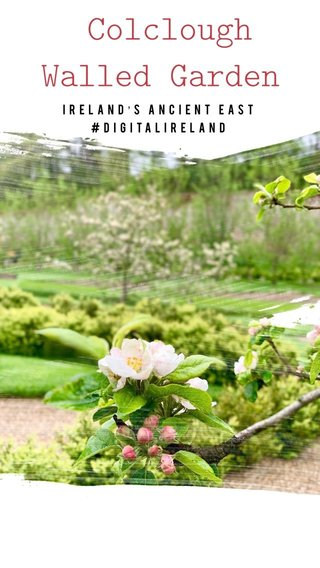 Colclough Walled Garden Ireland's Ancient East #DigitalIreland