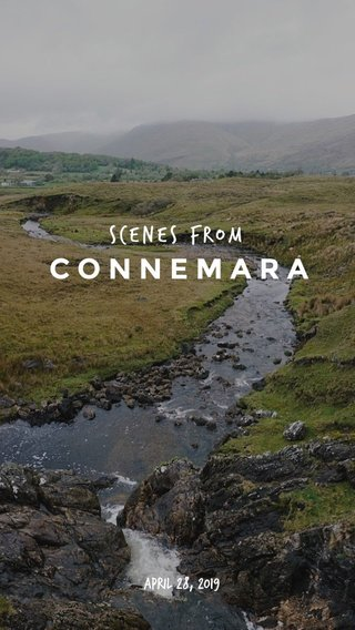 CONNEMARA scenes from April 28, 2019