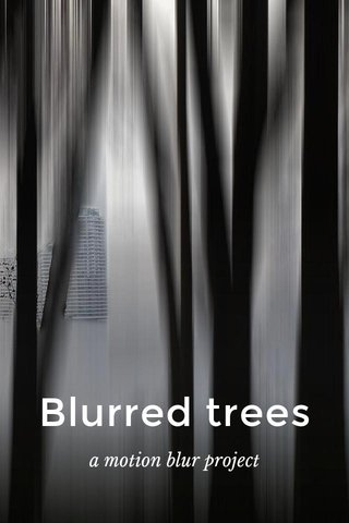 Blurred trees a motion blur project