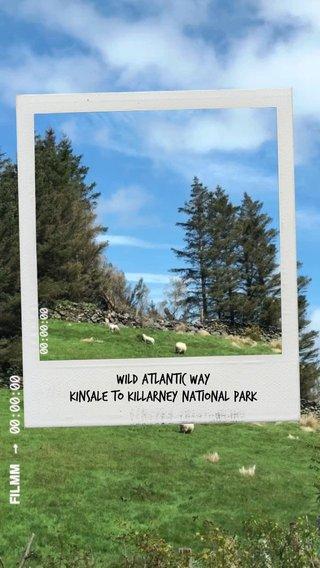 Wild Atlantic Way Kinsale to Killarney National Park