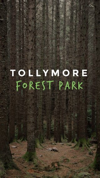 Forest Park TOLLYMORE