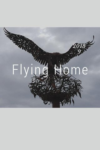 Flying Home 2018 9