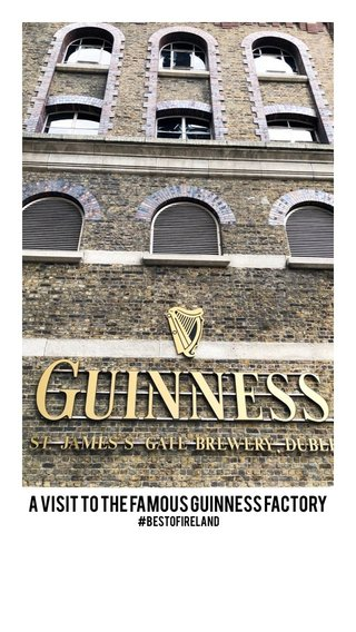 A visit to the famous Guinness factory #bestofireland