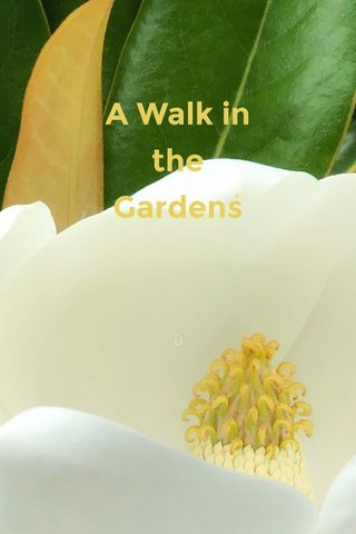 A Walk in the Gardens By Vicki Russell June, 2019 Ù