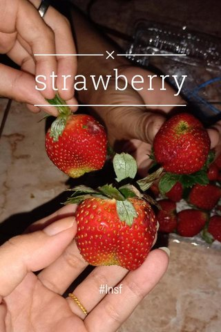 strawberry #lnsf