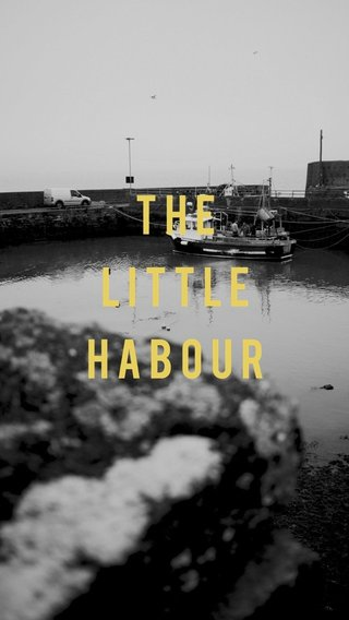 THE LITTLE HABOUR