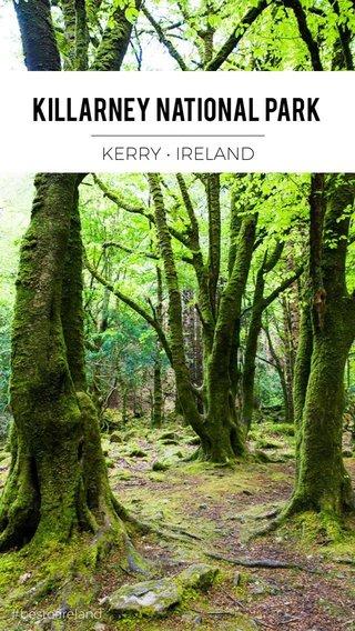Killarney National park __________________ KERRY • IRELAND #bestofireland
