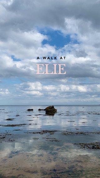 ELIE A WALK AT