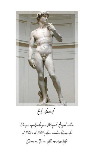 El david Va ser esculpida per Miquel Àngel entre el 1501 i el 1504 sobre marbre blanc de Carrara. Te un estil renaixentista