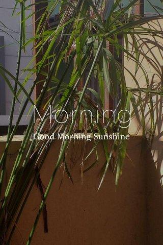 Morning Good Morning Sunshine