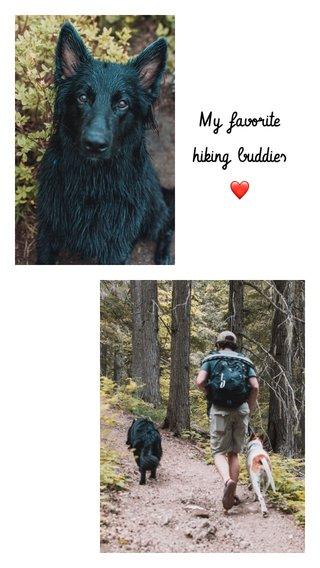 My favorite hiking buddies ❤️
