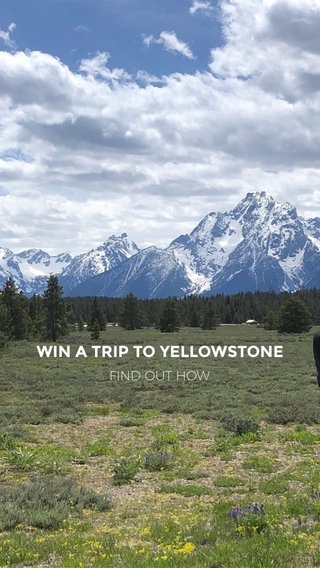 WIN A TRIP TO YELLOWSTONE FIND OUT HOW