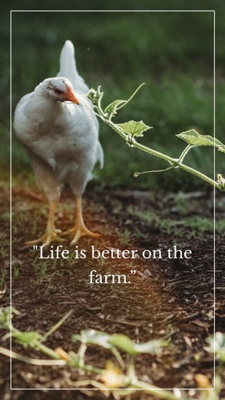 """""""Life is better on the farm."""""""