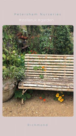 #stelleruk #garden Petersham Nurseries Richmond