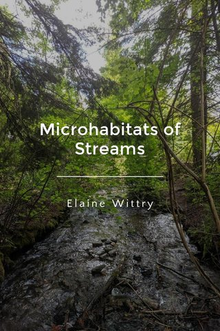 Microhabitats of Streams Elaine Wittry