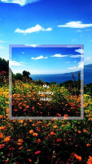 My Sunday Haiku