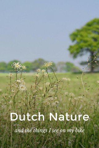 Dutch Nature and the things I see on my bike
