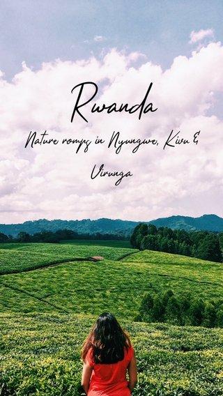 Rwanda Nature romps in Nyungwe, Kivu & Virunga