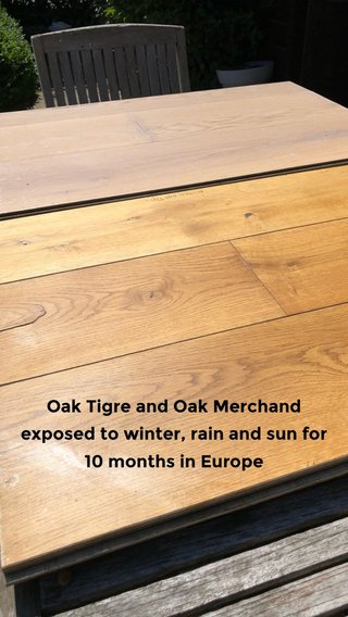 Oak Tigre and Oak Merchand exposed to winter, rain and sun for 10 months in Europe